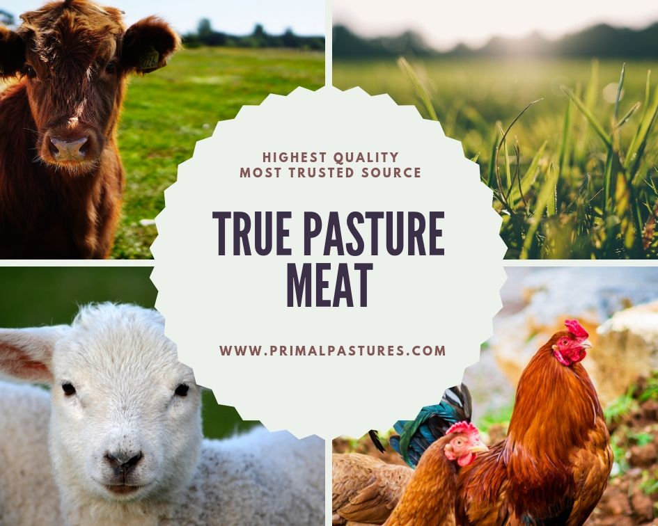 "farm animals with text ""true pasture meat"""